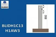 BLIDH1C13
